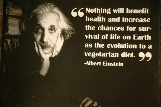 My Daily Health Regimen 1