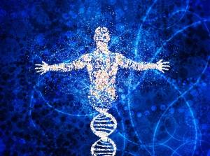 An Exploration of Consciousness Life Plasm